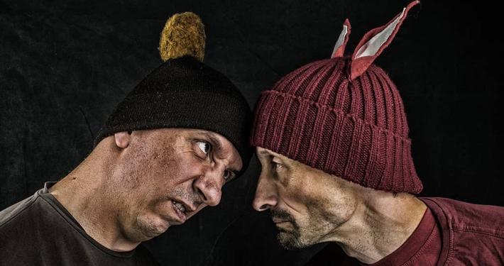 swedes vs kiwis poker