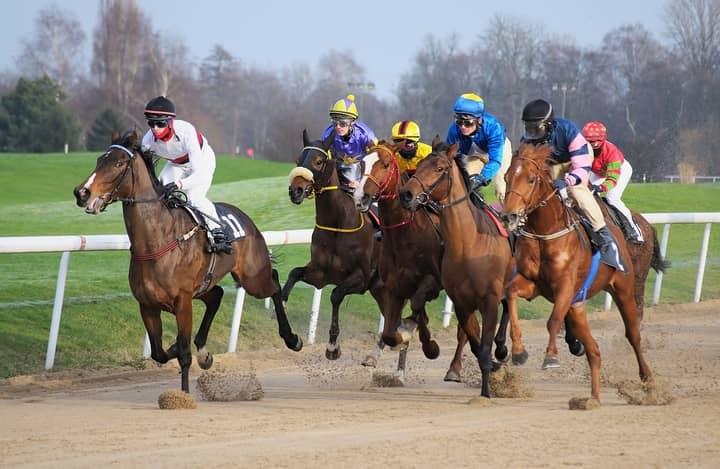 Horse-Race-Betting-Japan